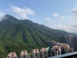 馬鞍山 銀湖天峰**極高層全山景**東南