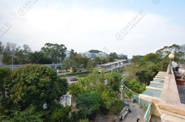 大埔 樟木頭村(帝琴豪苑)
