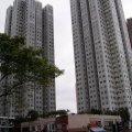 馬鞍山 福安花園 (已租) - T0079534 - 鞍駿街11號