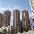 新港城東南兩房 新裝企理 - J0090393 - 鞍祿街18號