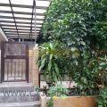 龍尾村 - H880018 - 龍尾村路