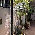 西貢 滿湖花園 - F803942 -