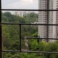 華明村 綠表 - L052371 - 華明路