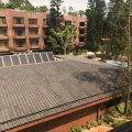沙田 麗峰花園   火炭半山環境清靜獨立屋 - N0079784 - 麗禾里2-4號