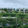 馬鞍山 雲海 (已租) - B0083318 - 耀沙路9號