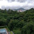 薈蕎  ~ 翠綠園景 ~ - Z0082602 - 大埔公路7838號大圍段