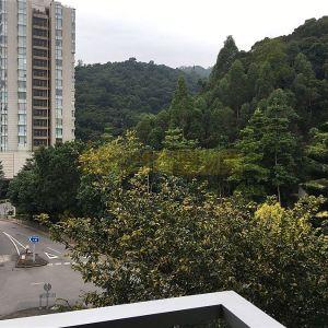 人傑地靈.城市綠洲.環境清淨.2房巨廳