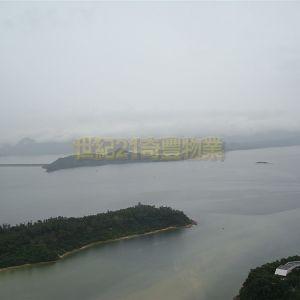 銀湖天峰 第06座