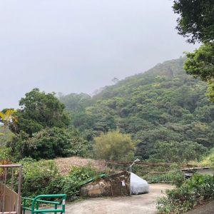 西貢 壁屋新村(金葉庭)