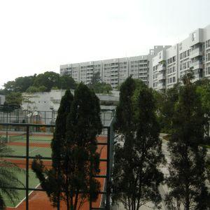 沙田 華翠園