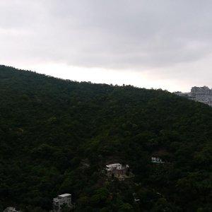 沙田 駿景園