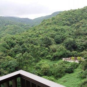 綠化林景環伺 三房套連工人套廁