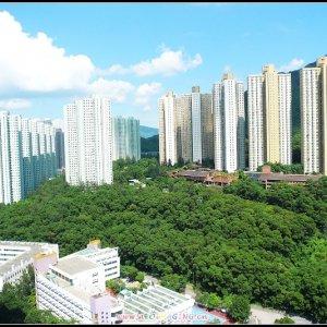 新港城***東南高層,開揚遠景****