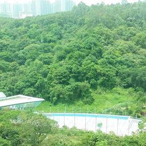 大埔 嵐山
