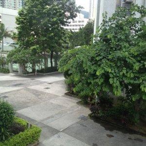沙田 大圍-海福花園- *****靚裝園景******