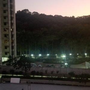 沙田 富豪花園