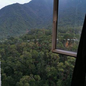 翠綠山景靚裝修巨廳兩房