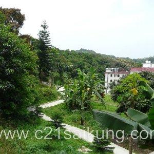 green view duplex