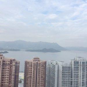新港城高層 改一房 可11月起租