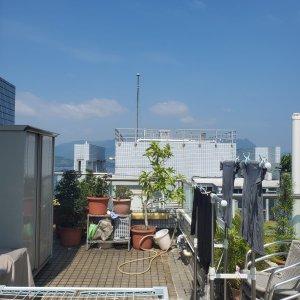 海柏花園 連天台