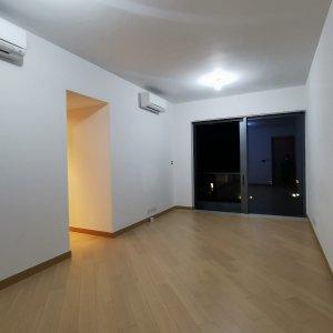 新鴻基頂級低密度豪宅
