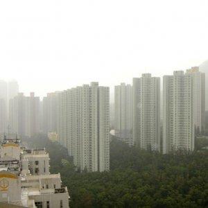 新港城   **高層,東南,兩房兩廳***