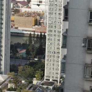 沙田第一城 企理 2房 實盤出租 即約即睇 還價即成 即租即住