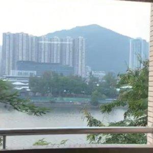 翠湖花園 B座 河景 巨廳巨房
