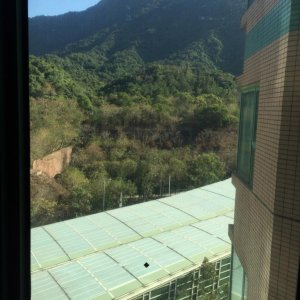 翠擁華庭 高層正南全山景