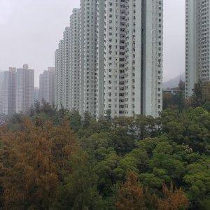 薈朗 翠綠山景,大房大廳
