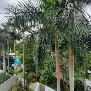 Sai Kung Villa - Managed Complex