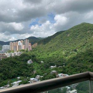 高層翠綠山景 廣闊大廳(三房套+工人套)