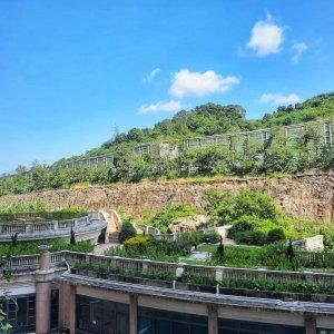 翠擁華庭 廳大房大,翠綠山景